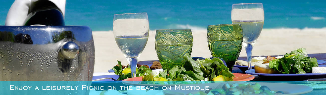Enjoy a leisurely Picnic on the beach on Mustique
